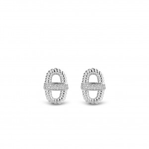 9196ZI Ti Sento Earringcharms