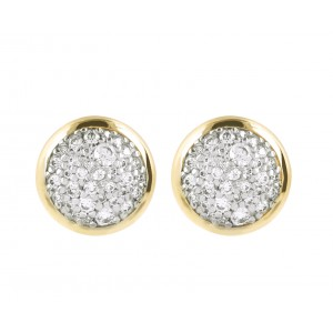 WSBZ01034YY Bronzallure Earrings