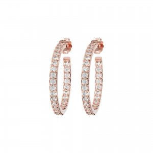 WSBZ01277WR Bronzallure Earrings