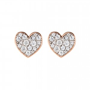 WSBZ01469W Bronzallure Earrings
