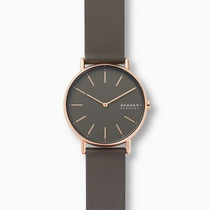 SKW2794 Skagen Signatur watch
