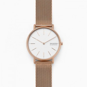 SKW2784 Skagen Signatur watch
