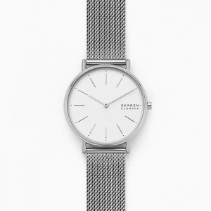 SKW2785 Skagen Signatur watch