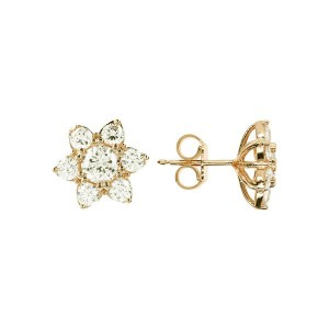 WSBZ01648YY Bronzallure Earrings