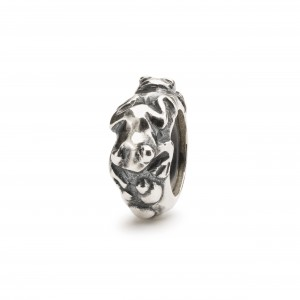 TAGBE-10239 Trollbeads Evolution Spacer