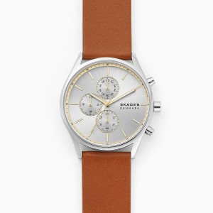 SKW6607 Skagen Holst gents Watch